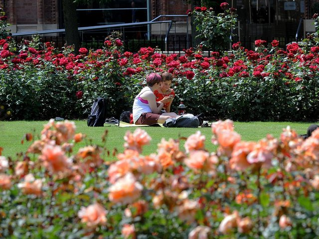 Sunbathers in Park Square in Leeds on the hottest day of the year in England. Photo: Simon Hulme
