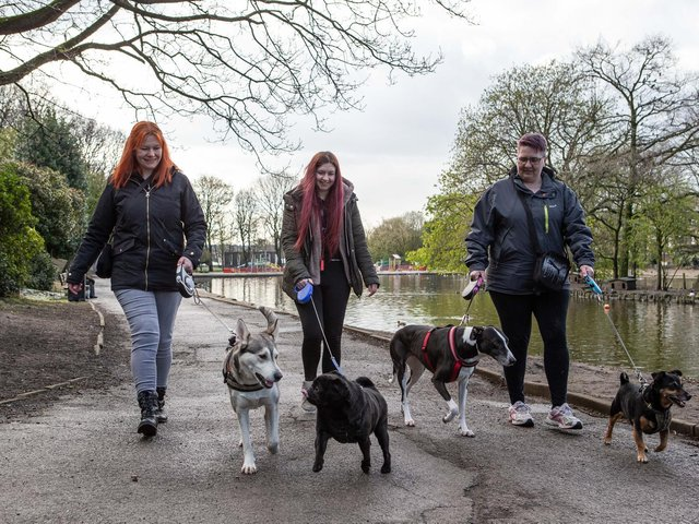 Gail Goor and Carrie Senior, with Meddie, who have set up a dog walking group for the protection of owners and pets, pictured at Wilton Park, Batley